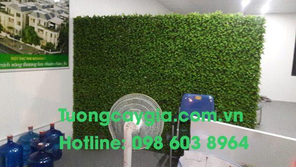 mang xanh tuong cay gia 3 (1)